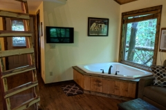 Jacuzzi Tub with a wooded view